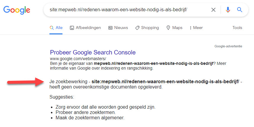 webpagina van website nog niet in google